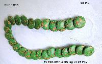 Turquoise Beads (HUF 015)
