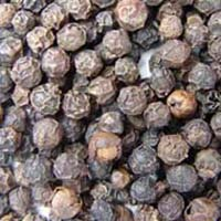 Black Pepper Exporters