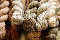 BCI Yarn 01