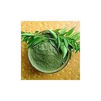 Bhringraj Powder