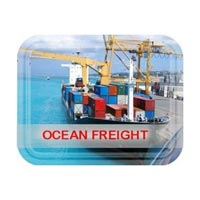 Ocean Freight Forwarding Services