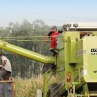 Dasmesh (9100) Maize Combine Harvester 02