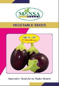 Brinjal Seeds (Prem - 387) 03