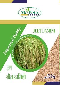 Improved Paddy Seeds 05