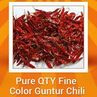 Guntur Dried Red Chilli