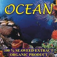 Seaweed Extract 02
