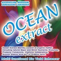 Seaweed Extract 03