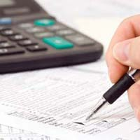 Central Excise Consultancy