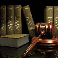 Company Law Consultancy