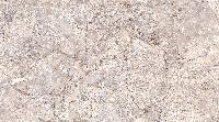 Glossy Series Wall Tiles (25x45) (3007 D)