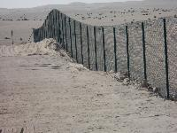 Sand Fencing 04