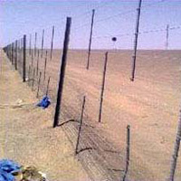 Sand Fencing
