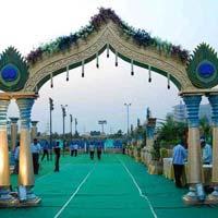 Wedding Fiber Entrance Gate