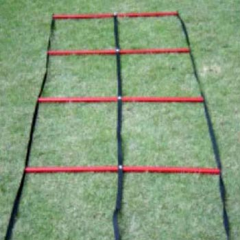 Double Step Ladder
