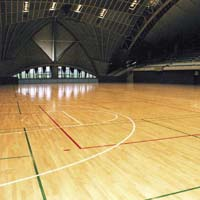 Multipurpose Court Flooring