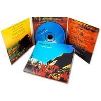 CD Sleeve Designing and Printing