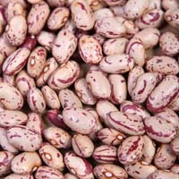 Speckled Kidney Beans