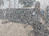 Imported Granite Slab 05
