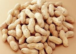 Shelled Peanut 02