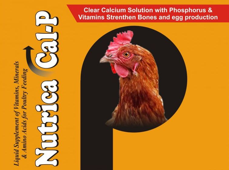 Nutrica Cal-P Supplement