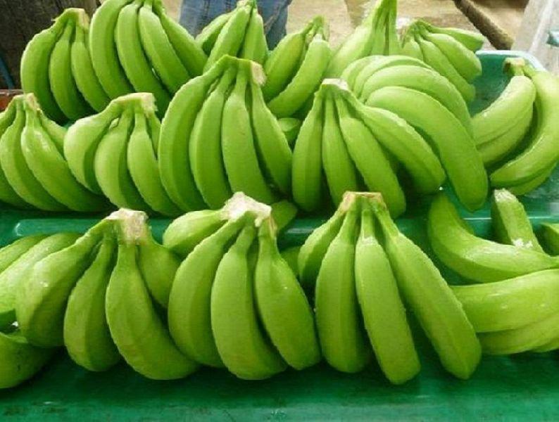 Fresh Cavendish Green Banana 01