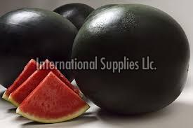 Densuke Black Watermelon