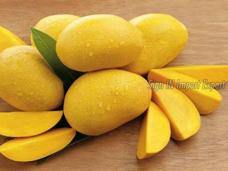 Fresh Mangoe 01