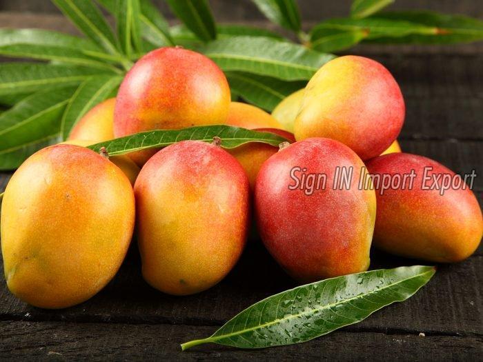 Fresh Mangoe 02