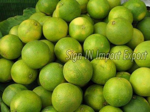 Fresh Sweet Lime 01
