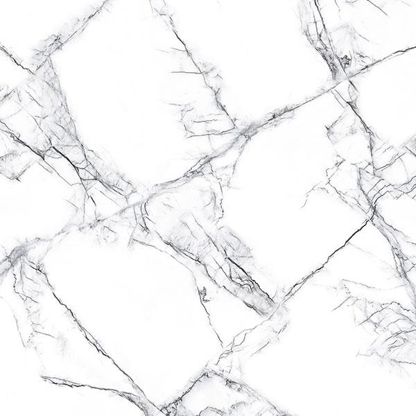 60x60 cm Glossy GVT & PGVT Tiles