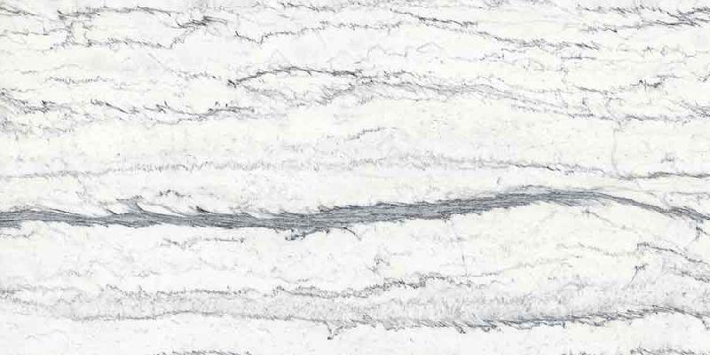 Proch-White