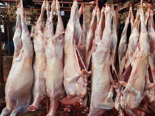 Sheep Mutton