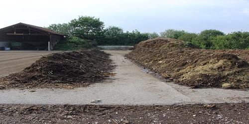 Organic Compost 01