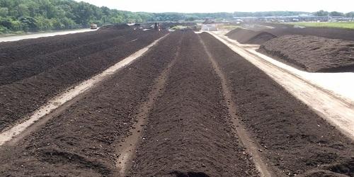Organic Compost 03