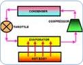 Mak Freezol Oil Graph