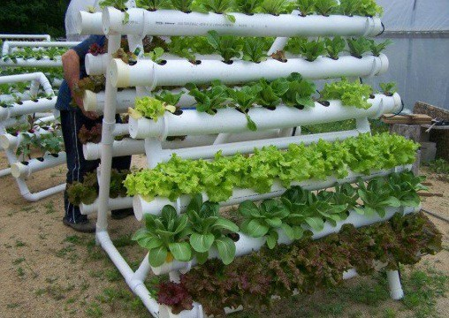 Hydroponic Installation System Services 01