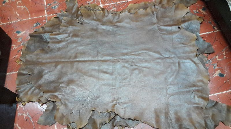 Tanned Sheep Leather 02