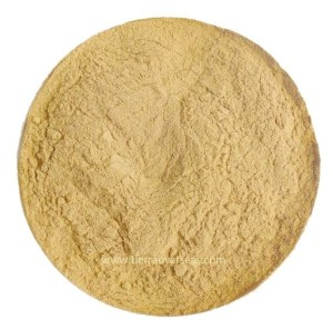 Natural Papaya Powder