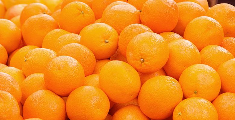 Fresh Orange 02