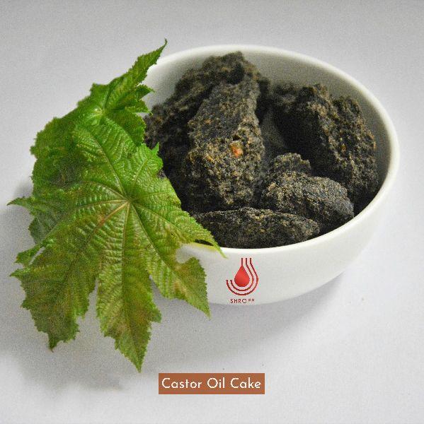 Castor Oil Cake - Manufacturer Exporter Supplier in Vadodara India