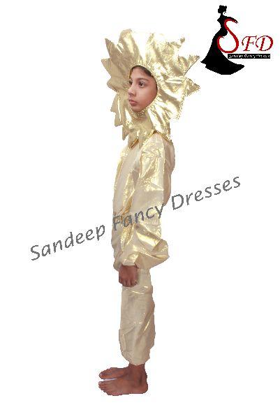 Universe Fancy Dress  02