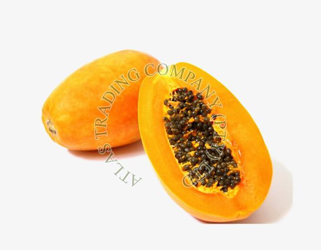 Fresh Carica Papaya