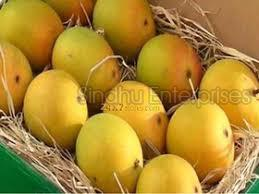 Rumani  Mango