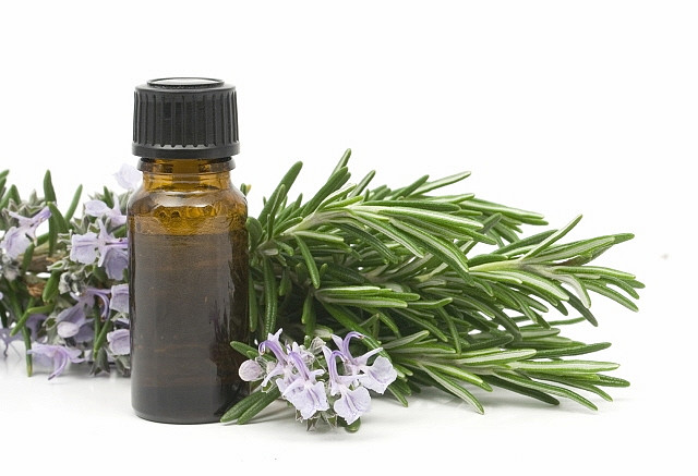 Natural Rosemary Oil