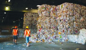 Mixed Waste Paper 01