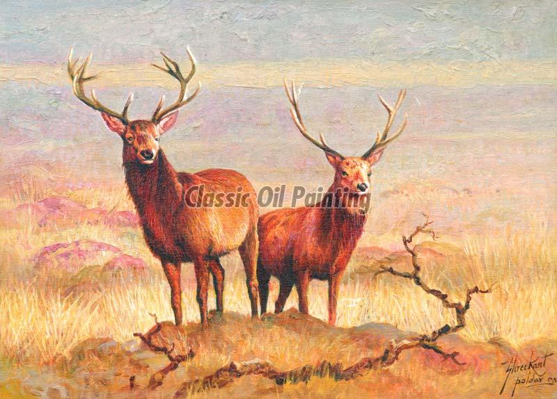 Wildlife and Animal Paintings