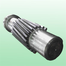Worm Shaft