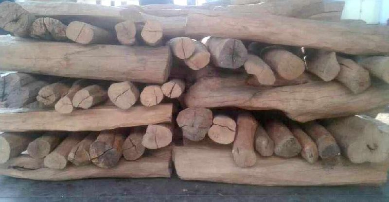 Sandalwood Logs 02