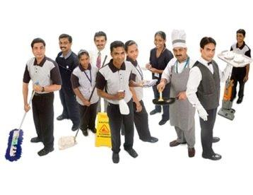 DT Cleaning Services