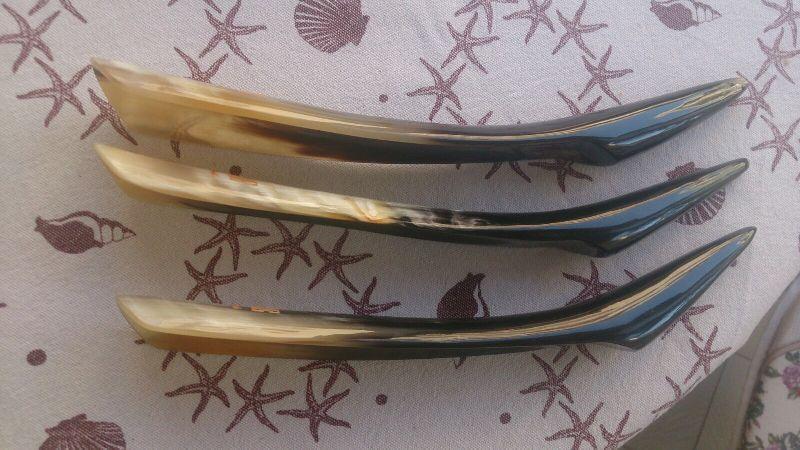 Shoe Horns 10